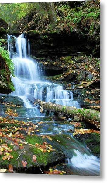 Ricketts Glen Hidden Waterfall Metal Print