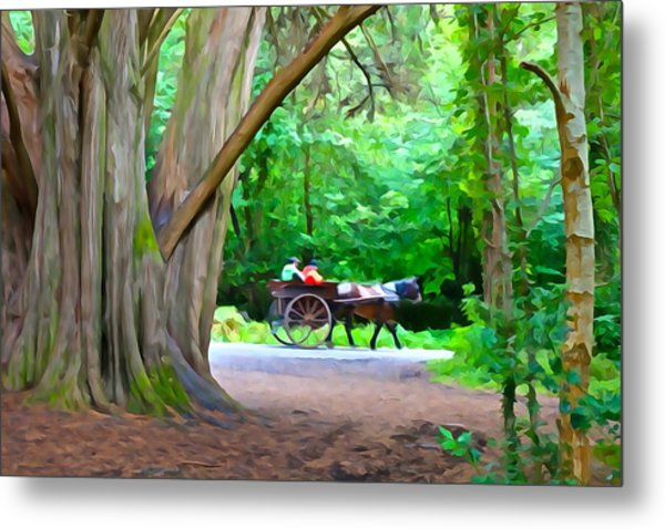 Riding In Style Metal Print