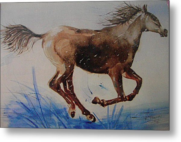 Riding The Rain Metal Print