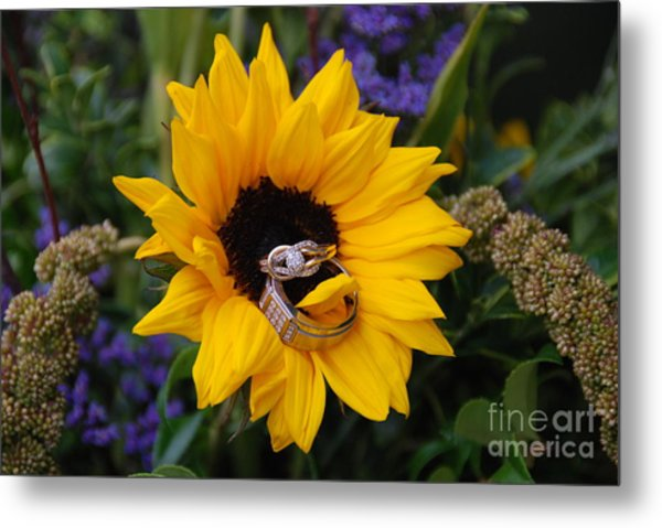 Rings On A Sunflower Metal Print