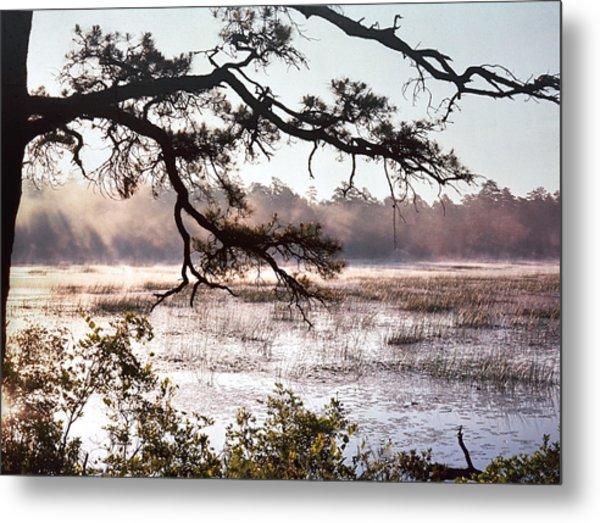 Rising Mist On Batsto Lake Metal Print