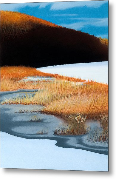 River And Reeds Metal Print by Bruce Richardson