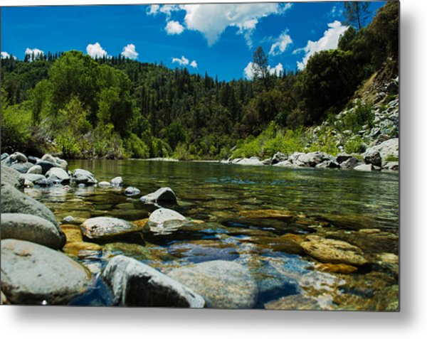 River Bottom Metal Print
