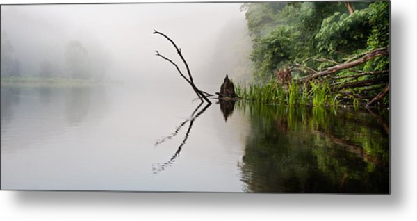 River Crabs Metal Print