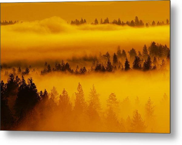 River Fog Rising Metal Print