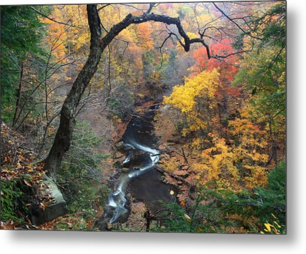 River Gorge Metal Print