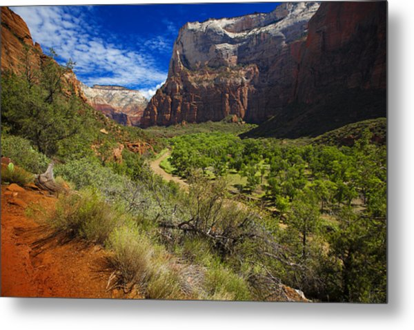 River View In Zion Park Metal Print