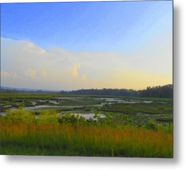 River's Dreamscape Metal Print by Dina  Stillwell