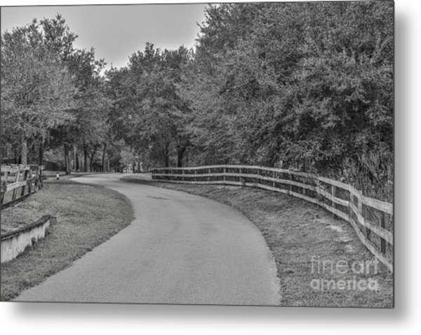 Road Path Metal Print by Mina Isaac