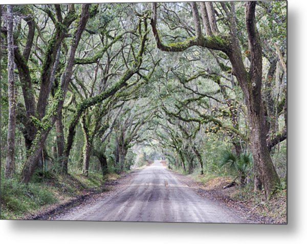 Road To Botany Bay Metal Print