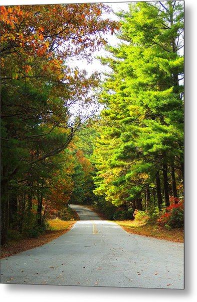 Road To The Chapel Metal Print by Judy  Waller