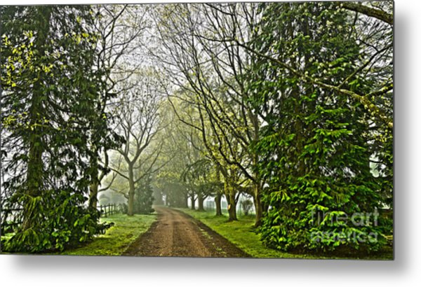 Road To The Manor House Metal Print