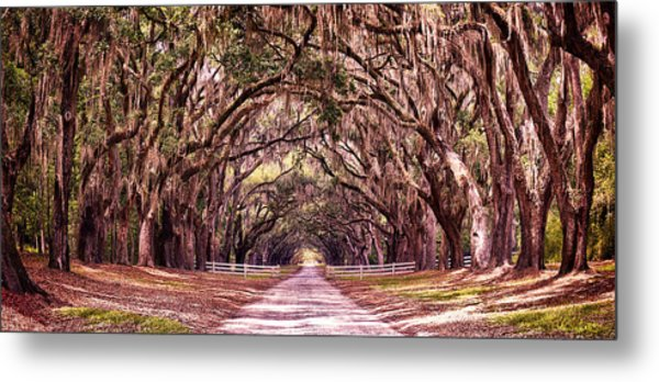 Road To The South Metal Print