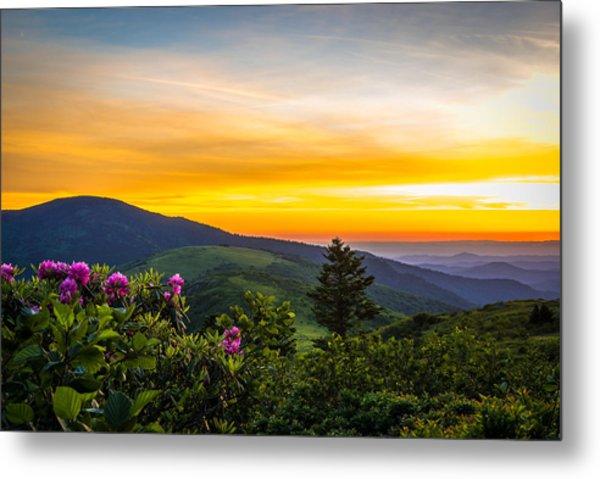 Roan Mountain Sunset Metal Print
