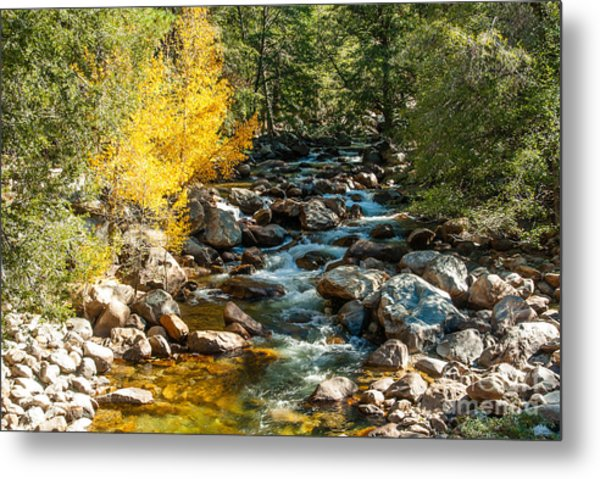 Roaring River 1-7782 Metal Print by Stephen Parker