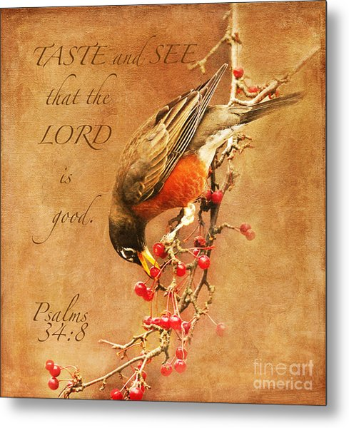 Robin Psalms Thirty-four Metal Print