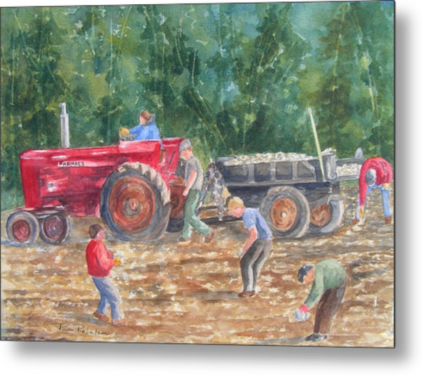 Metal Print featuring the painting Rock Picking by Paula Robertson