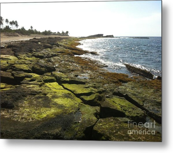 Rocks In Puerto Rico Metal Print by Sean Hughes