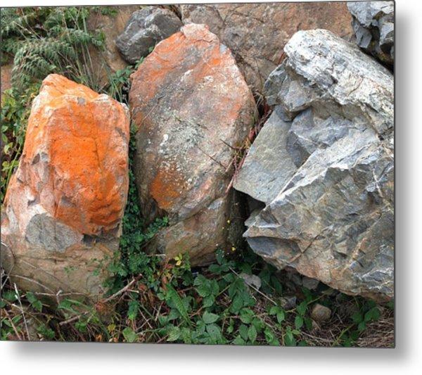 Rocks Metal Print by Ron Torborg
