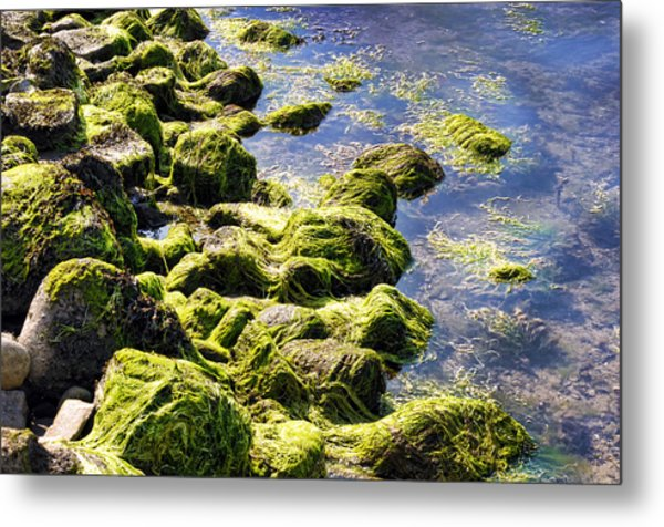 Rocky Green Metal Print by Kenneth Feliciano