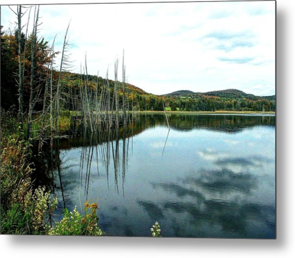 Rodgers Pond Metal Print