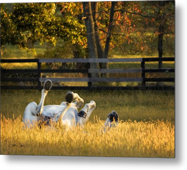 Roll In The Hay Metal Print