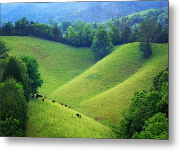 Rolling Hills Of Tennessee Metal Print