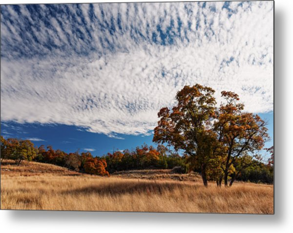 Rolling Hills Of The Texas Hill Country In The Fall - Fredericksburg Texas Metal Print