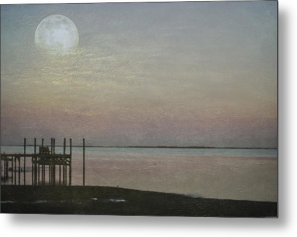 Romancing The Moon Metal Print
