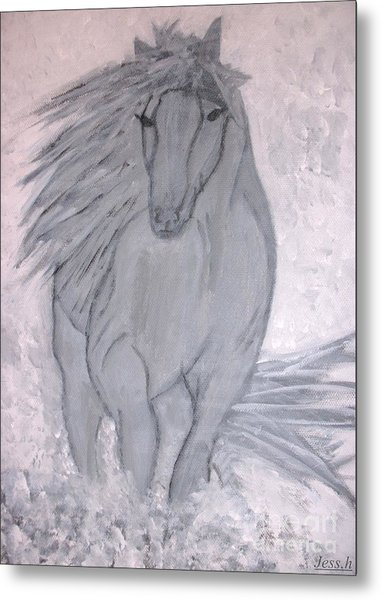 Romeo The White Stallion Metal Print