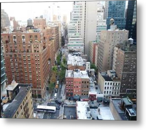 Rooftop View Metal Print
