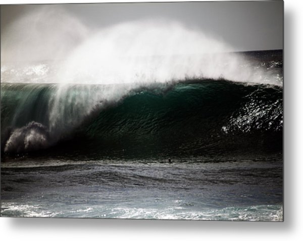 Rooster Tails Metal Print
