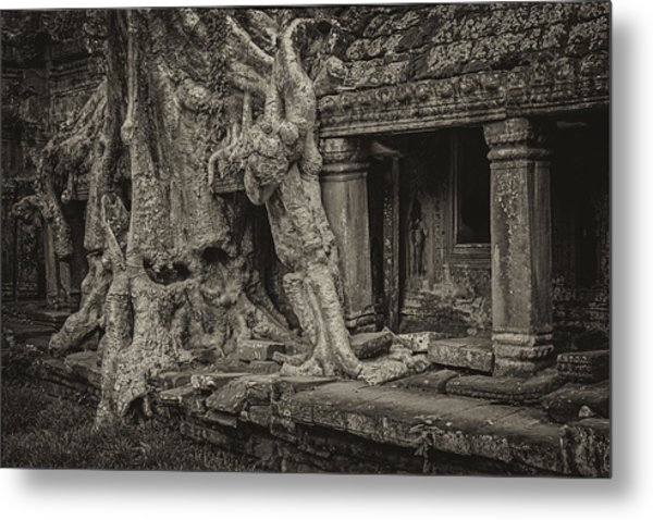 Roots In Ruins 7, Ta Prohm, 2014 Metal Print