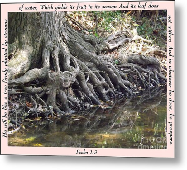 Roots With Verse Psalm 1 3 Metal Print
