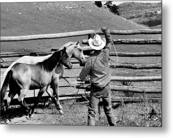Roping The Young Ones Metal Print