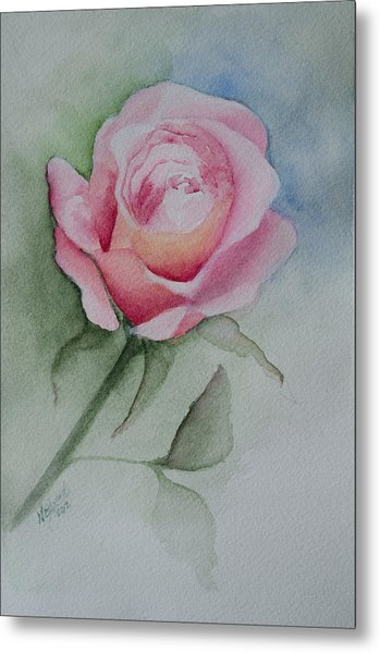 Rose 1 Metal Print by Nancy Edwards