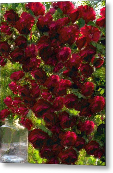 Rose Avalanche Metal Print