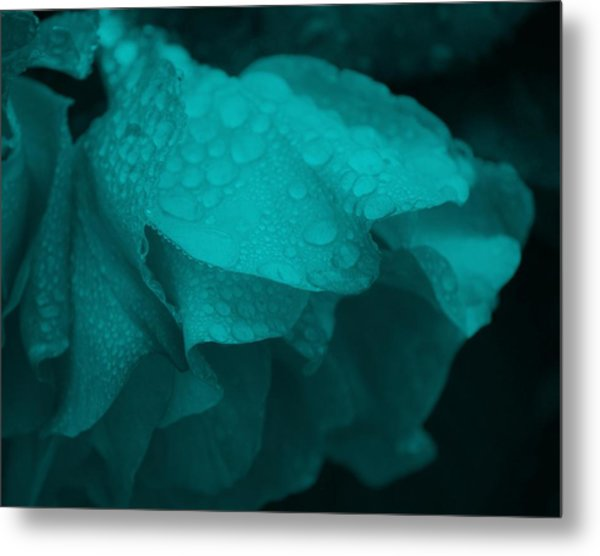 Rose In Turquoise Metal Print