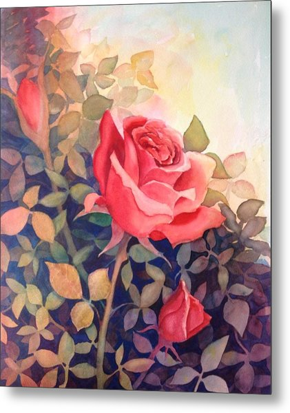 Rose On A Warm Day Metal Print