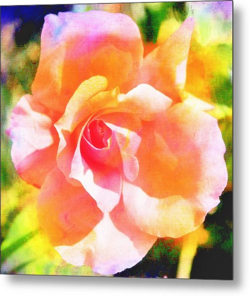 Rose On Canvas  Metal Print by Cathie Tyler