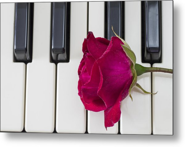 Rose Over Piano Keys Metal Print