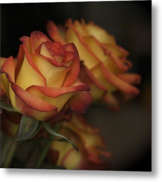 Rose Parade Metal Print