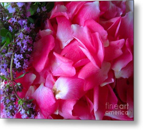 Rose Petals And Thyme Metal Print