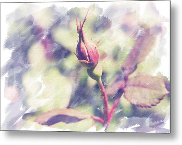 Rosebud Metal Print by Eric Ziegler