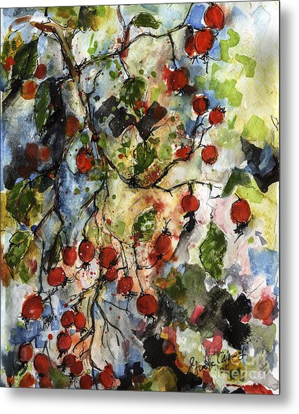 Rosehips By Ginette Watercolor And Ink Metal Print