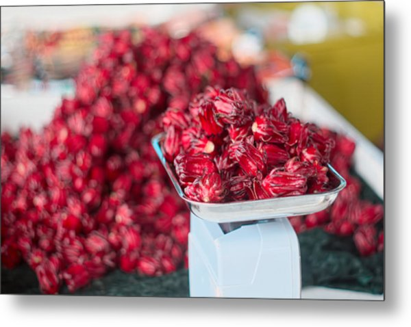 Roselle Fruit Metal Print