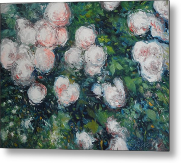 Roses At Diemersfontein Cape Town South Africa Metal Print by Enver Larney