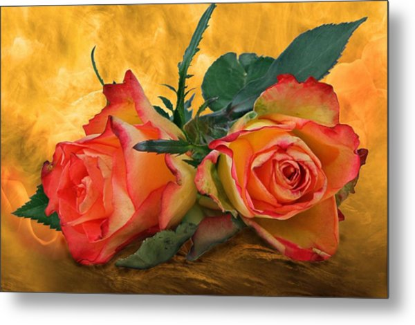 Love For Two Metal Print