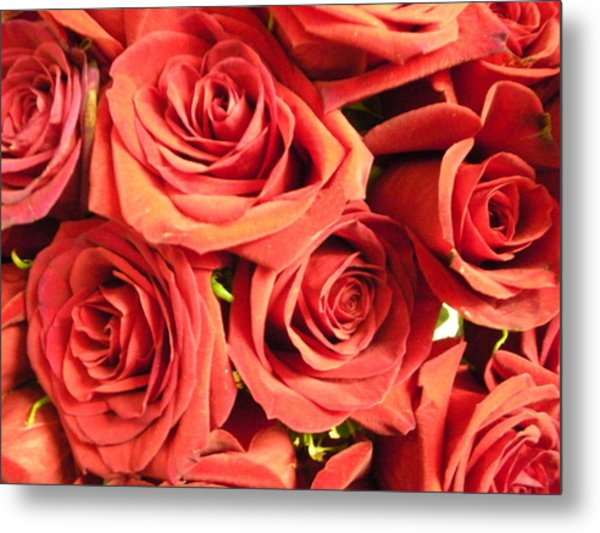 Roses On Your Wall Metal Print