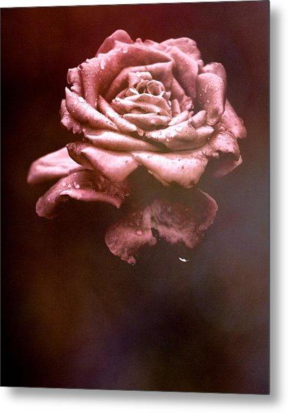 Rosy Fog Metal Print